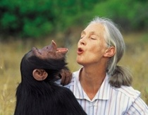 Ten Facts You Should Know about Jane Goodall
